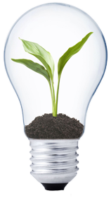 Green LED Solutions